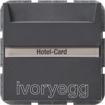 System 55 Hotel-card button 10 A 250 V~ with inscription space 2-way switch, anthracite
