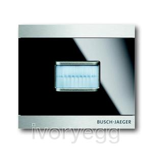 Busch-priOn Glass Black Watchdog Sensor