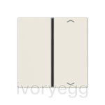 F40 A/AS range Cover kit 1-gang, with symbols, ivory
