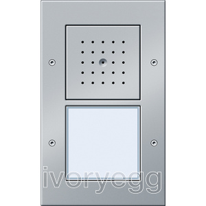 Surface Mounted Door Station - 1 Call Button, Audio TX44 Colour Aluminium