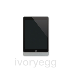 0120 01 eve plus   sleeve ipad 9.7   brushed aluminium