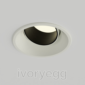 Delta Recessed Tilt&Rotate Downlight - PRO12, 10degrees 2700K with Osram DALI Driver